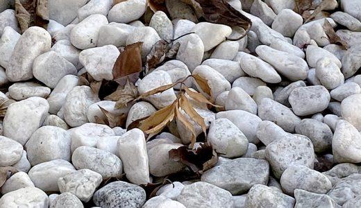 砂利と、落ち葉と、ブロワーバキューム